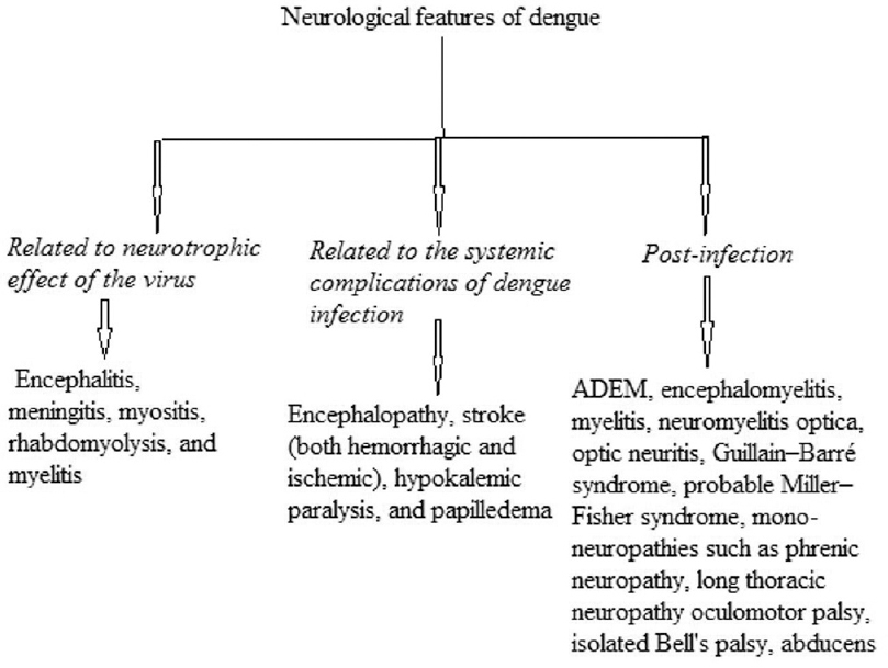 Figure 3: Categorization of neurological features of dengue by Murthy
