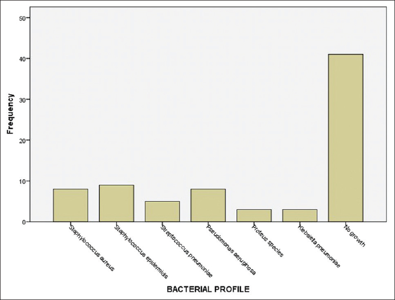 "Figure 1: Bacterial profile. <i>Staphylococcus epidermidis</i> was the major isolate accounting for 11.7%. The ""No growth"" group might be fungal organisms"